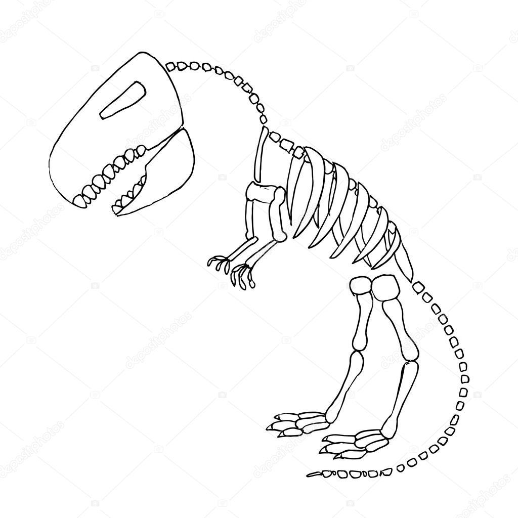 Tyrannosaurus Rex Fossiele Stockvector Hlivnykagmailcom