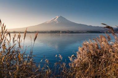 Mountain Fuji in morning from lake kawaguchiko