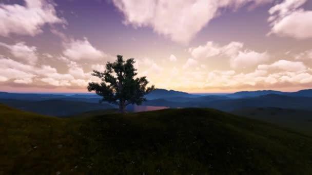 Strom Sunrise mezi horami