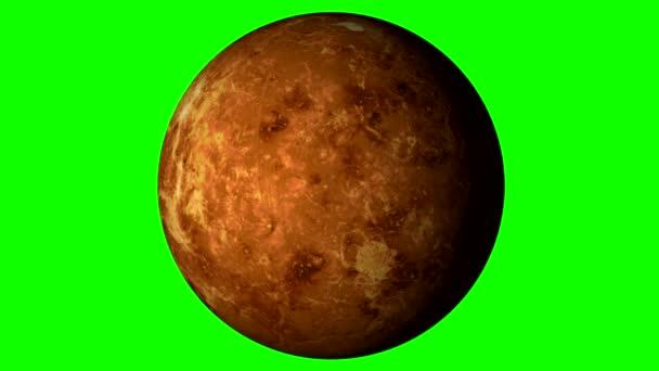 Venus Rotante Su Sfondo Verde A Tinta Unita Loopable Video Stock