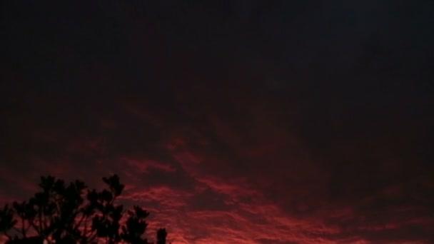 A view of purple red Paris sky