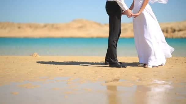 Wedding couple hugs on the beach. Sea background. Half-length