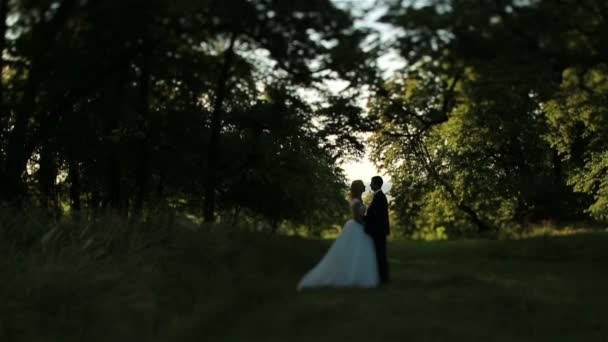 Lovely wedding couple softly kissing in a green summer forest
