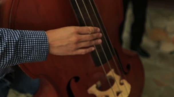 A musician playing contrabass close up