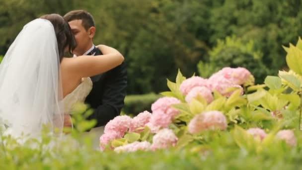 Šťastný novomanželský nevěsta a ženich líbat, kvetoucí zelené letní parku. Elegantní ženich drží jeho nádherná nevěsta