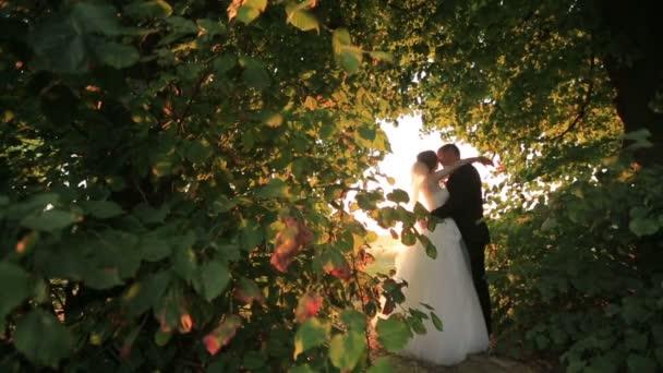 Krásný novomanželský nevěsta a ženich všeobjímající a podíl romantický polibek v úžasné zelené parku při západu slunce