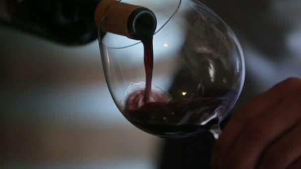 Nalil víno Sommelier do skla