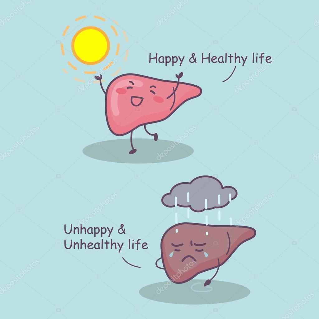 hígado sana y feliz vida — archivo imágenes vectoriales © etoileark