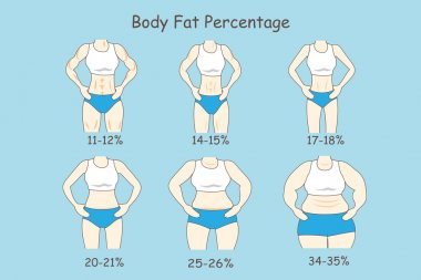 Cartoon about body fat percentage