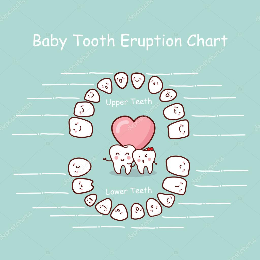Baby tooth chart record Vector etoileark 96003608 – Baby Teeth Chart