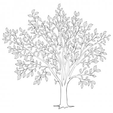 Tree with leaves silhouette vector. Coloring book page for adult