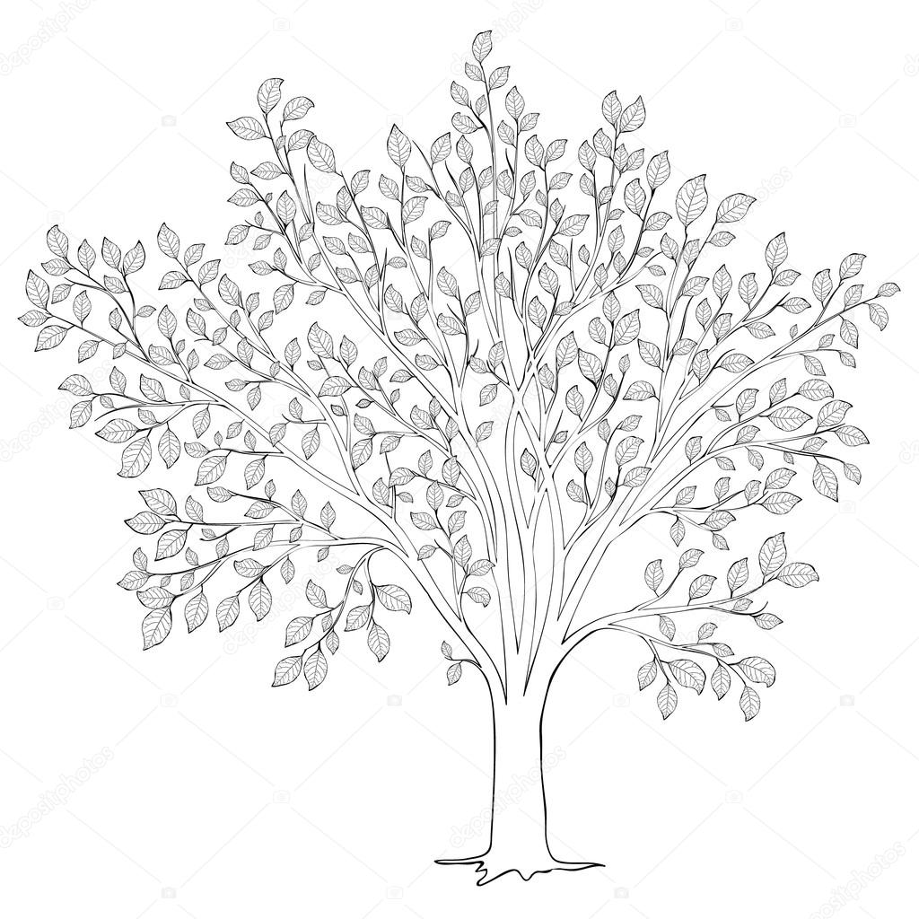 Tree With Leaves Silhouette Vector Coloring Book Page For Adult