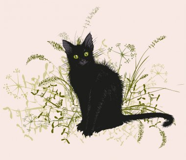 Black cat in a withered grass.