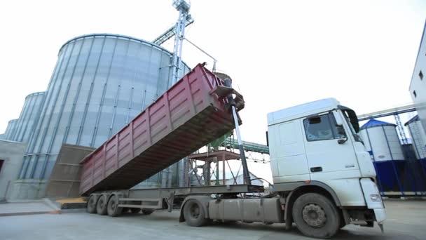 LKW lädt Getreide in Aufzug.