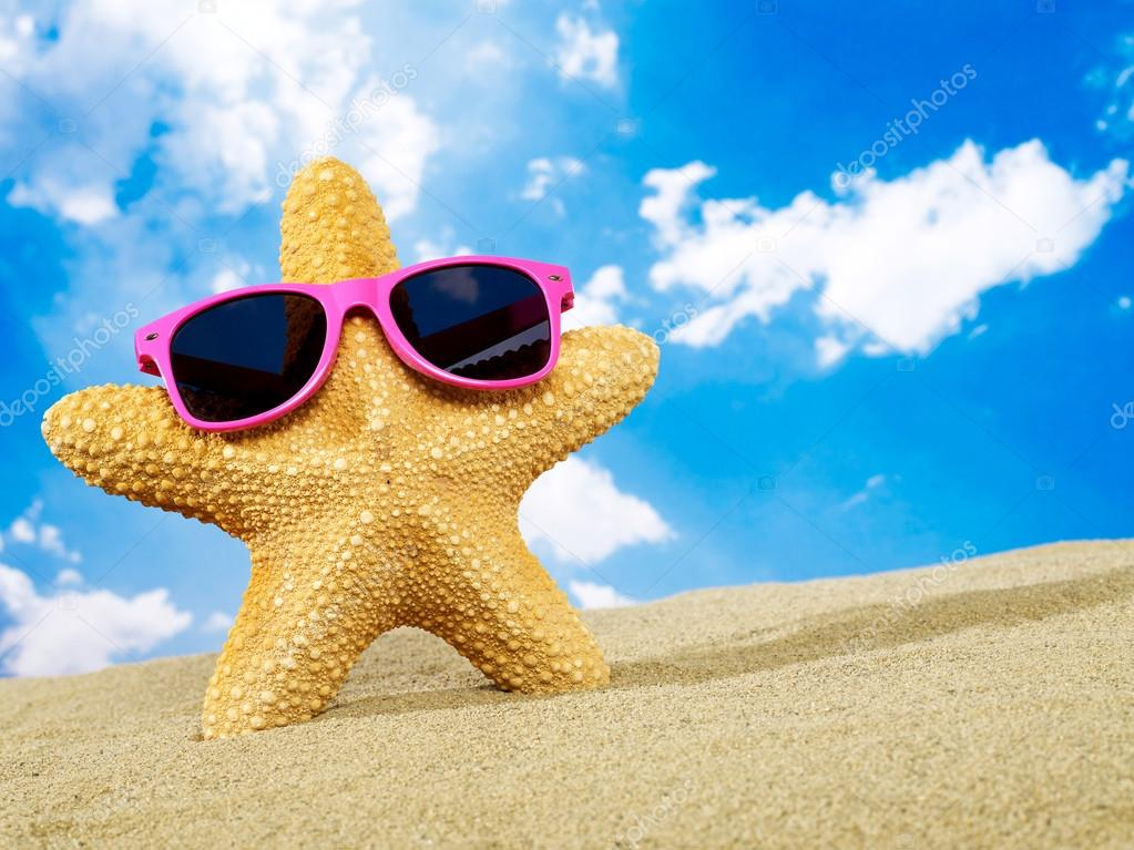 Cool starfish with sunglasses