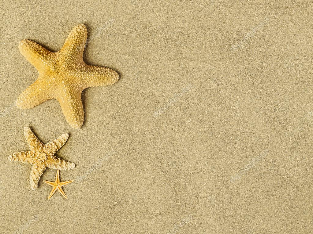 Starfishes on sand