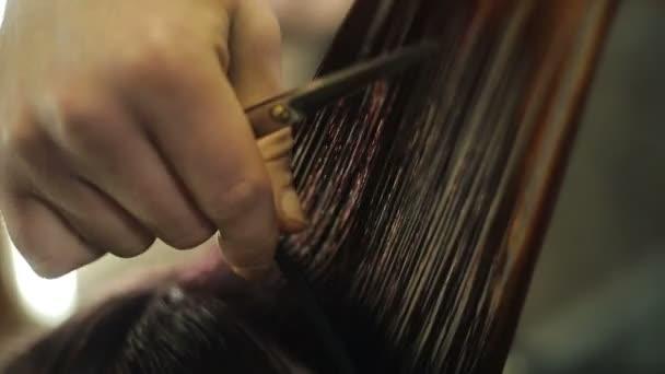 Holič česání Zenske mokré vlasy