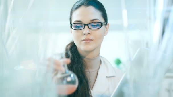 Laborangestellte überprüft den Inhalt des Kolbens