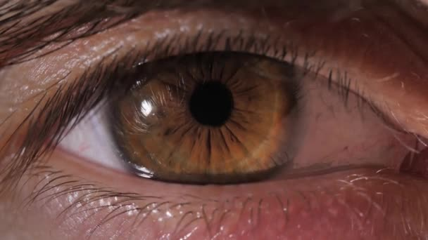 Eye of a young man