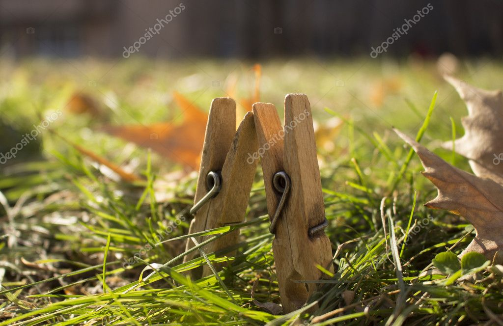 Two wooden clothespins on green grass with orange leaves