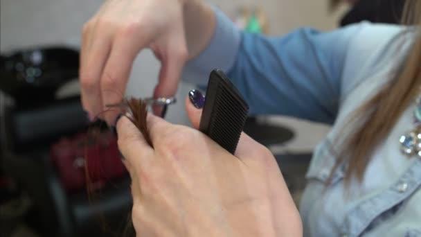 Hairdressers hands cut hair scissors