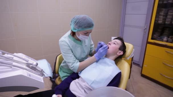 Zubní prohlídky zubů