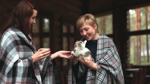 Two girls stroking a kitten