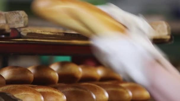 Bakery. Mechanized Bakery. Production of bread
