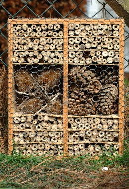Bug hotel - DIY project