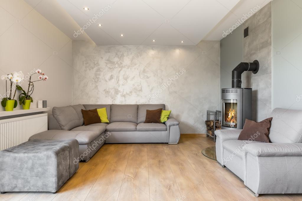 Prachtige woonkamer in grijs idee — Stockfoto © in4mal #119668414