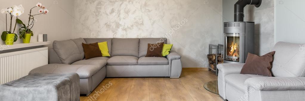 Prachtige woonkamer in grijs — Stockfoto © in4mal #120422354