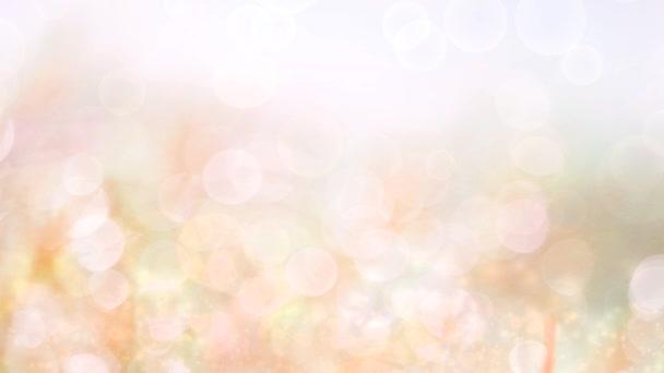 svěží podzimní bílý třpyt s jiskrou abstraktní rozmazané listy květiny v zahradě