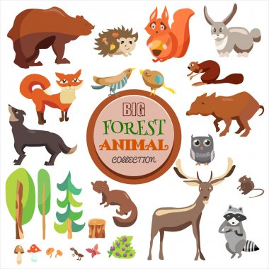 Big Forest Funny Animals Set. Vector Collection, Isolated On White Background, Fox, Squirrel, Bear, Wolf and Others,