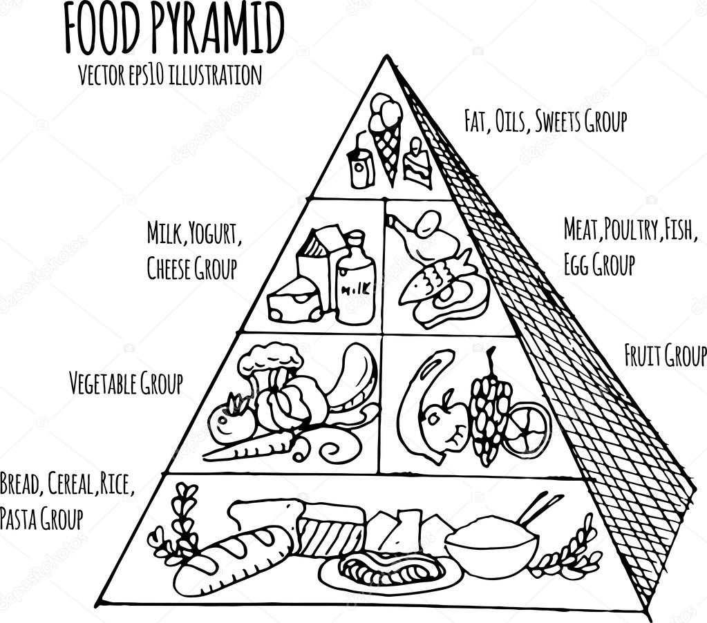 hand drawn infographic illustration of food pyramid