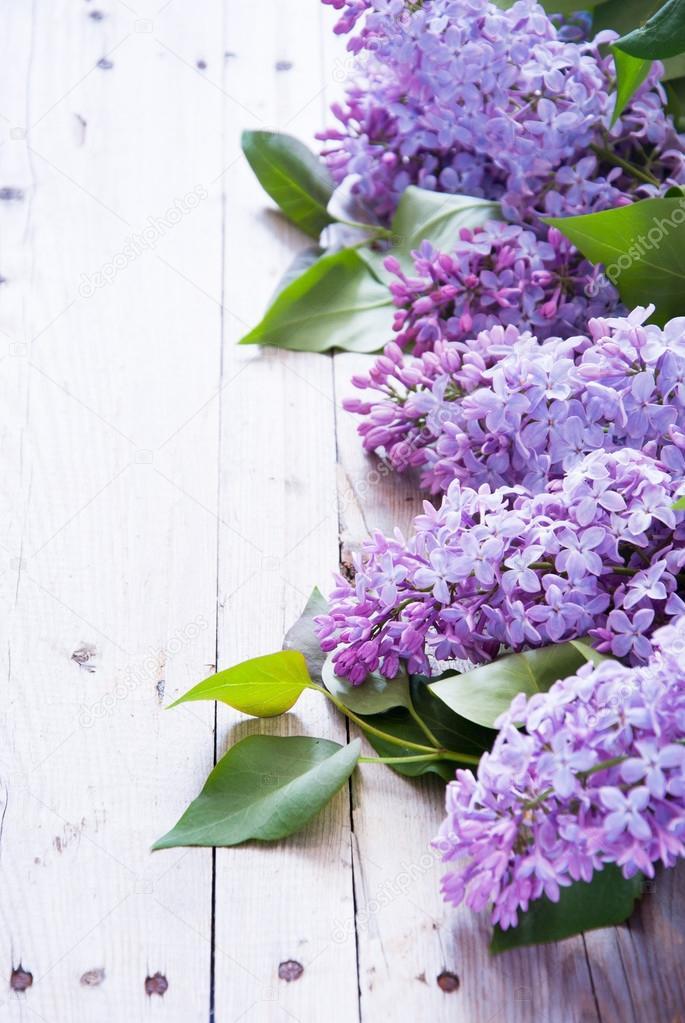 Краски шварцкопф игора палитра цветов фото