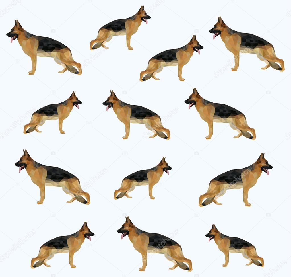A dog (shepherd) pattern