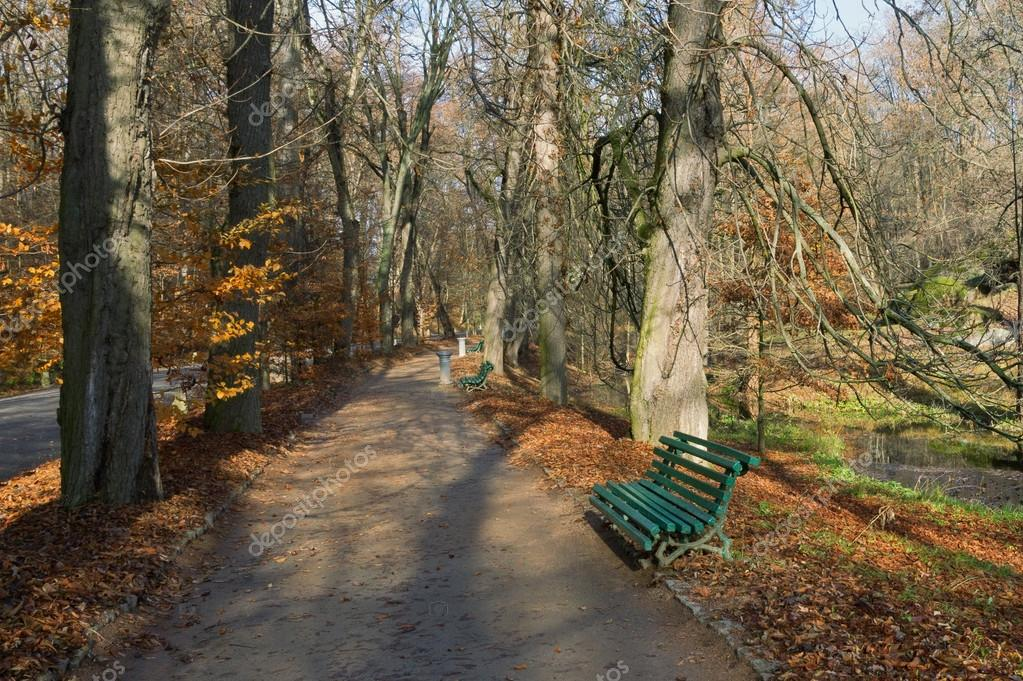 Central Alley in park