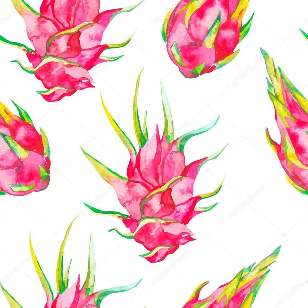 Tropical seamless pattern. Exotic leaves and fruit. Vector.Dragonfruit, pitaya,pitahaya. Pitaya is the plant in Cactaceae family or Cactus.