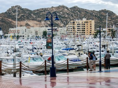 Marina, Cabo San Lucas, Mexico