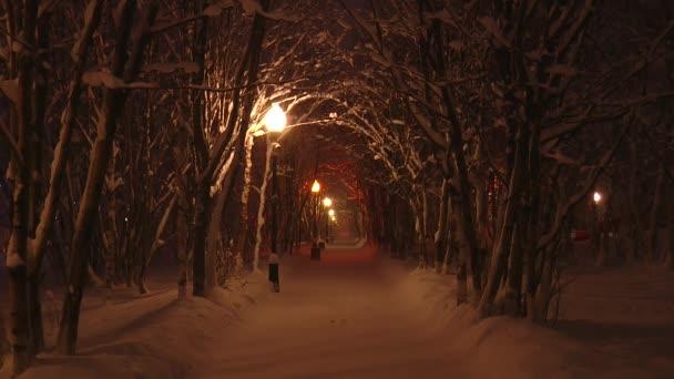 Nachtgasse im Winterpark, Straßenlaterne leuchtet Schnee.
