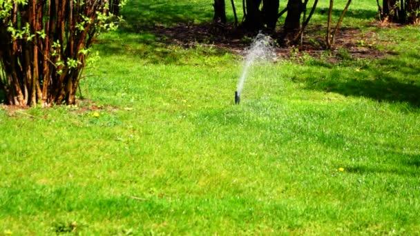 sprinklerové vodní sprchování trávy v parku