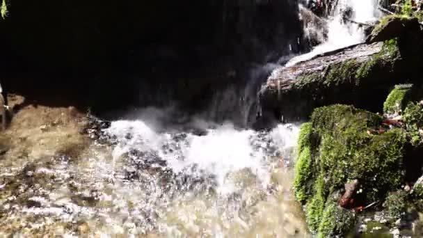 Malý vodopád rychle tekoucí vody, zeleným mechem a pobočky