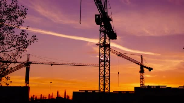 Time lapse  cranes working in construction site at dusk, time lapse, 4k,pan.Craner climbing