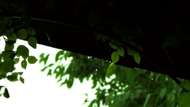 Csepp szivárgott a veranda tető-eső hanggal