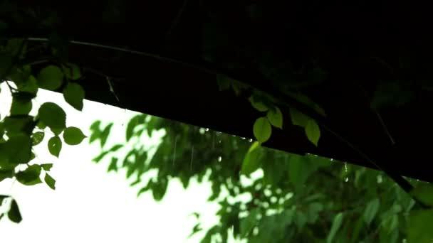 Kapky z vchodu střechy s zvuk deště
