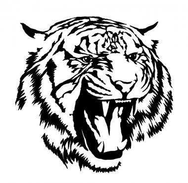 black and white ink draw tiger illustration