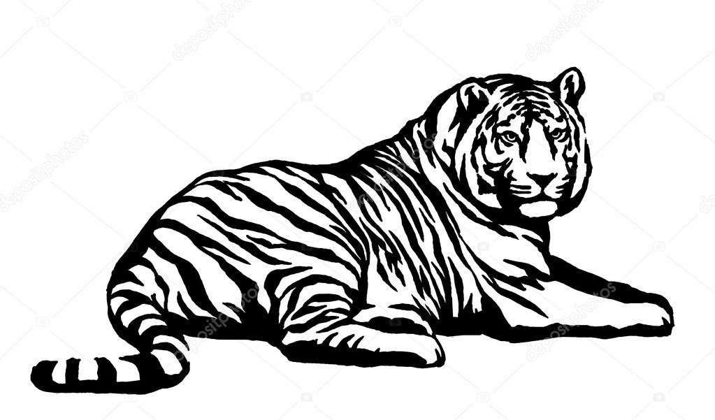 schwarze und wei er tinte ziehen tiger abbildung stockfoto 116033180. Black Bedroom Furniture Sets. Home Design Ideas