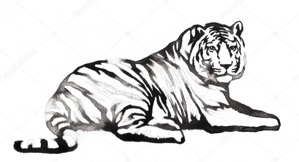 mit wasser und tinte schwarz wei malen zeichnen tiger abbildung stockfoto turaevgeniy. Black Bedroom Furniture Sets. Home Design Ideas
