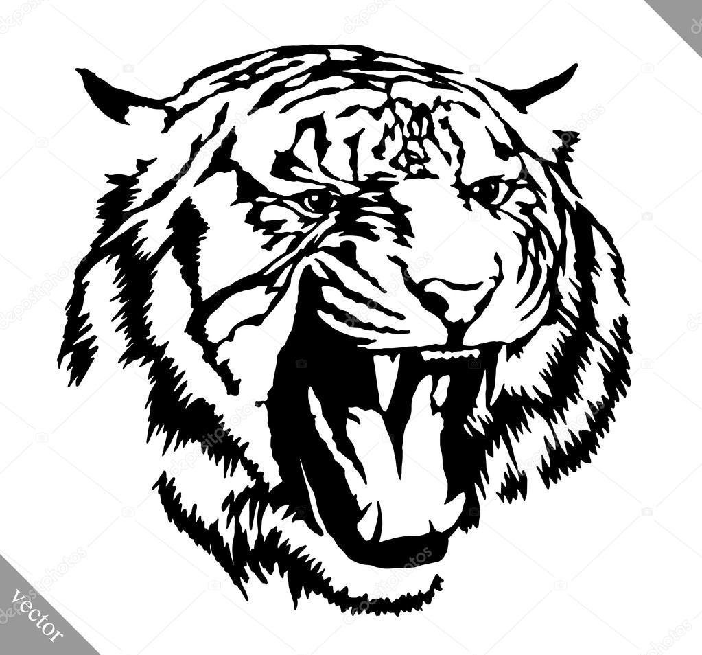 Tigre De Tirage Noir Et Blanc Encre Vector Illustration Image