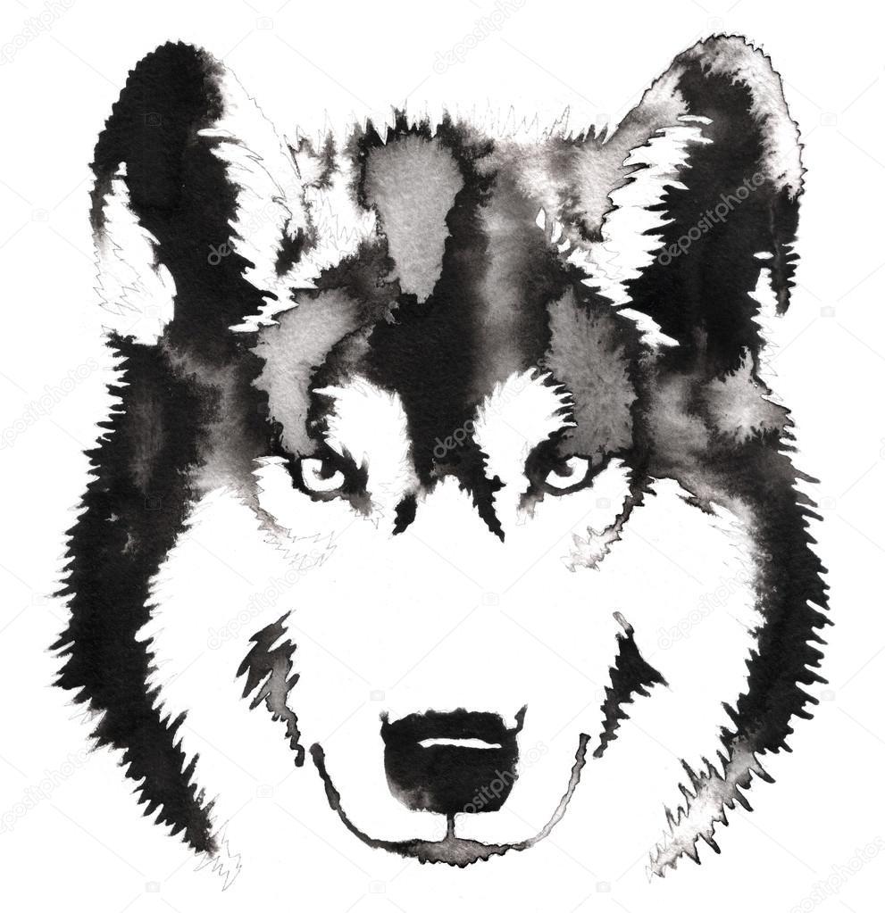 水とインクの黒と白のモノクロ絵画イラスト オオカミ ストック写真